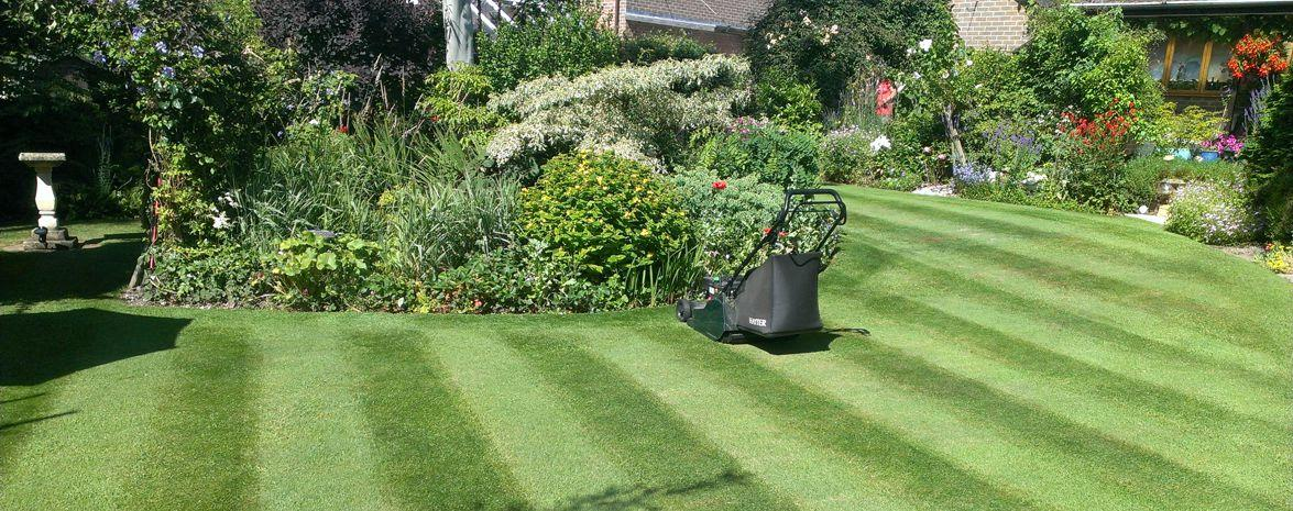 Mowing and Maintenance Service