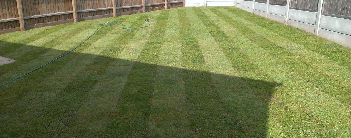 Lawns & Turfing